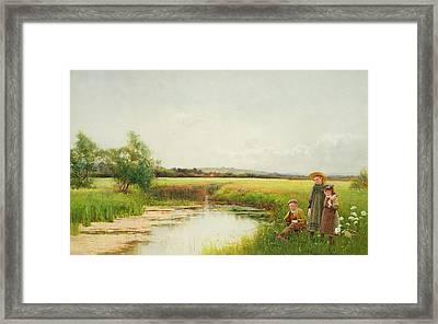 Springtime Framed Print by Benjamin D Sigmund