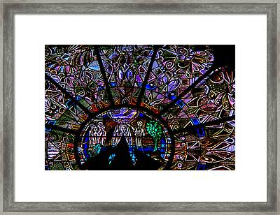 The Color Of Life Framed Print