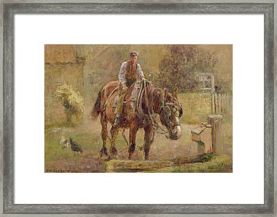 The Drinking Trough  Framed Print