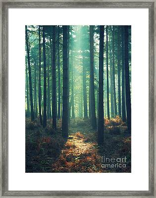 The Green Ray Framed Print by Paul Grand