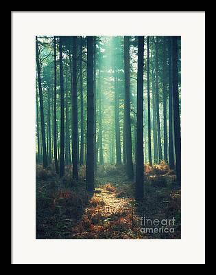 Rayon Vert Framed Prints