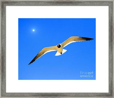 To The Sun And Back Framed Print by Richard Burr