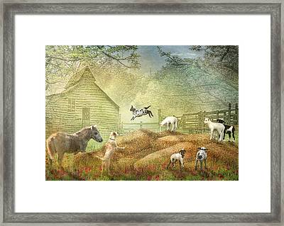 Framed Print by Trudi Simmonds