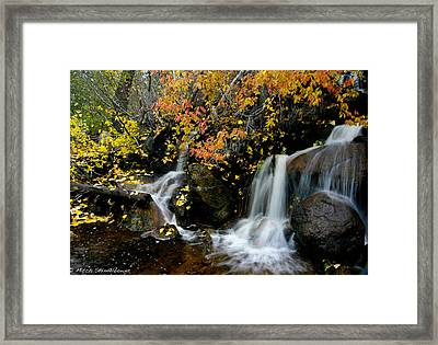 Framed Print featuring the photograph  Waterfall by Mitch Shindelbower