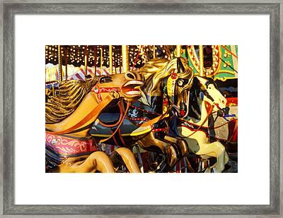 Wild Carrousel Horses  Framed Print by Garry Gay
