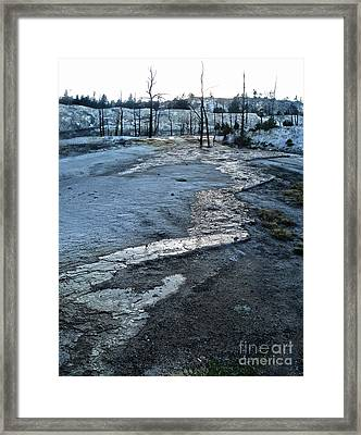 Yellowstone National Park - Minerva Terrace - Desolation Framed Print by Gregory Dyer