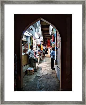 Zoco Of Muskat Framed Print by Jenny Senra Pampin
