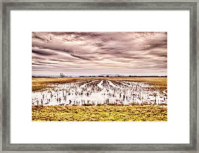 0704-8703 Winter Clouds At Holla Bend Wildlife Refuge Framed Print by Randy Forrester