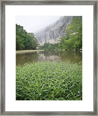 0706-0079 Roark Bluff At Steel Creek 1 Framed Print by Randy Forrester