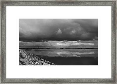 081412-6 Framed Print by Mike Davis
