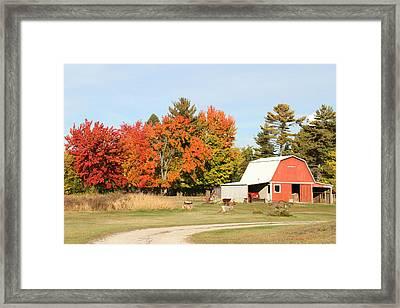 10022012 066 Framed Print