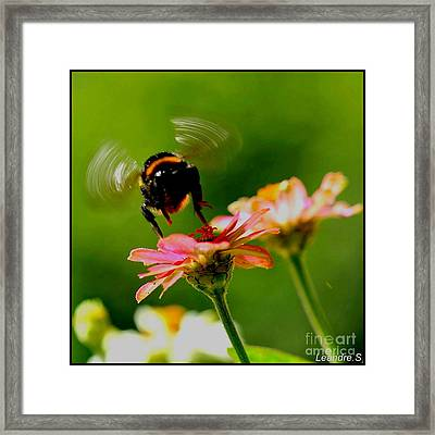 A Bee Framed Print by Sylvie Leandre