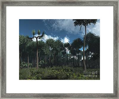 A Carboniferous Forest Of Midwestern Framed Print by Walter Myers