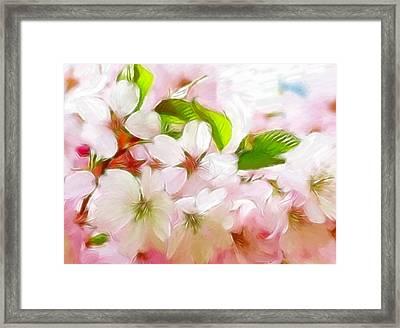 A Day In Spring Framed Print by Steve K