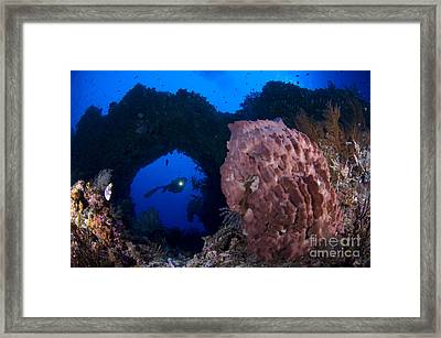 A Diver Looks On At A Giant Barrel Framed Print