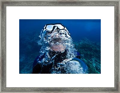 A Free Diver Exhales Framed Print by Jason Edwards