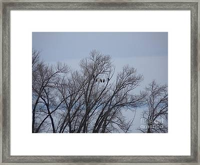 A Gathering Of Eagles Framed Print by David Bearden