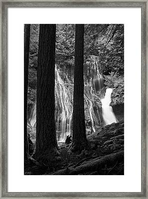 A Panther Lurks Framed Print