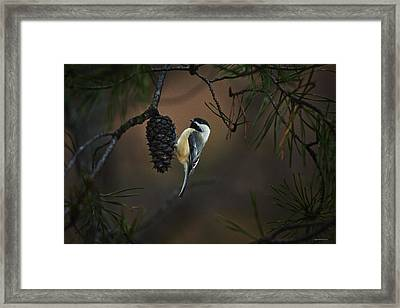 A Private Moment Framed Print by Ron Jones