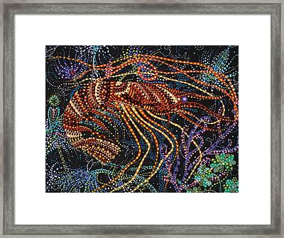 A Shrimp Framed Print
