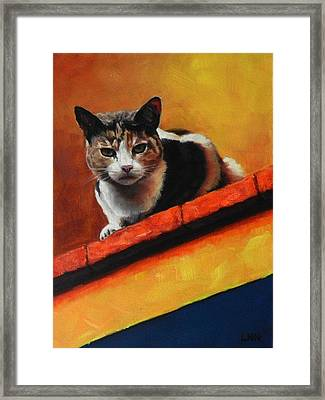A Top Cat In The Shadow Framed Print