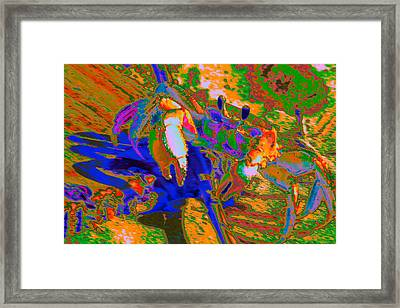 Abstract Crab 2 Framed Print