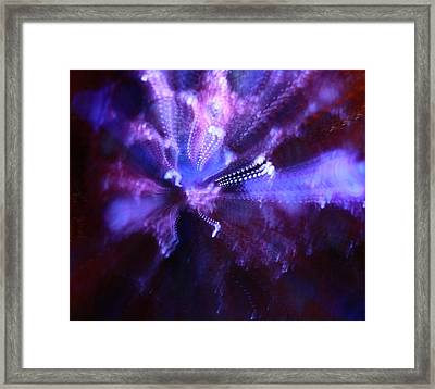 Abstract Light Framed Print by Ellery Russell