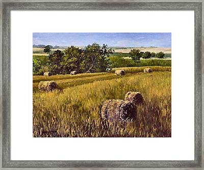 All Rolled Up Framed Print