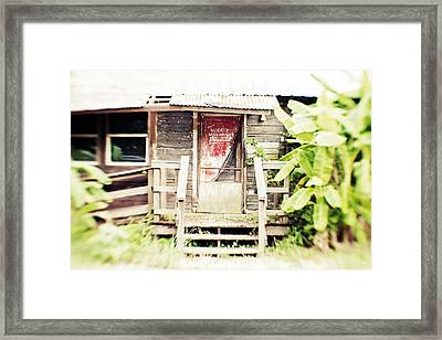 Alligator Bayou Bar Framed Print by Scott Pellegrin