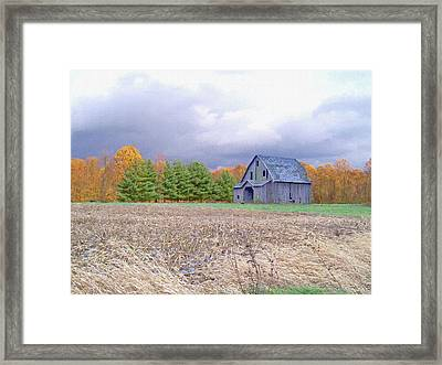Alone In The Field Framed Print