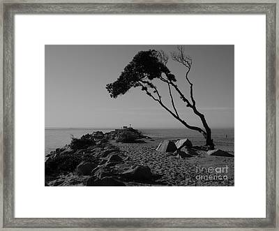 Framed Print featuring the photograph Alone Time by Everette McMahan jr