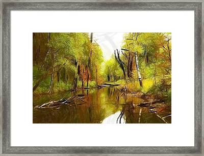 Along The River Framed Print by Steve K