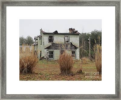 American Contrasts Framed Print by Valia Bradshaw