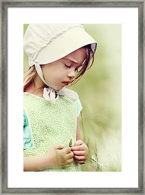Amish Child Framed Print