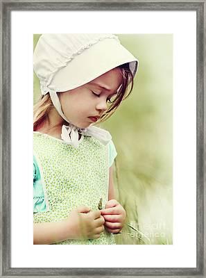 Amish Child Framed Print by Stephanie Frey