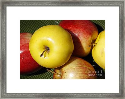 An Apple A Day Framed Print by Denise Pohl