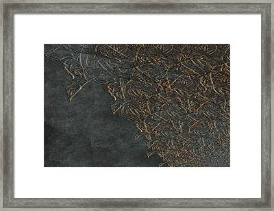 Ancient Fossils Framed Print by Christopher Gaston