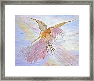 Angel-keeper Of The Rainbow Framed Print