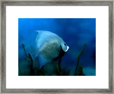 Framed Print featuring the digital art Angelfish by John Pangia
