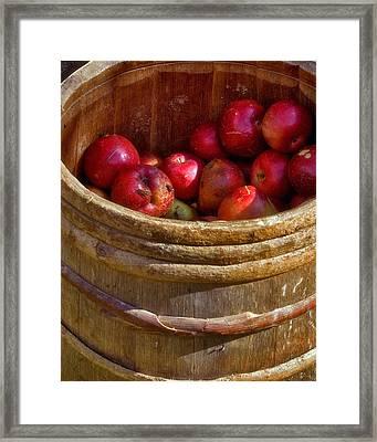 Apple Harvest Framed Print by Joann Vitali