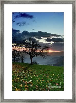 Apple Tree Before Sunset Framed Print by Bruno Santoro