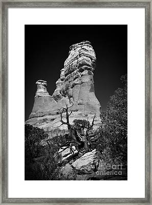 Arches National Park Bw Framed Print by Larry Carr