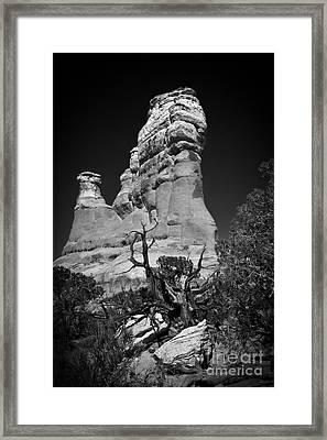 Arches National Park Bw Framed Print