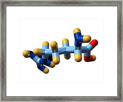 Arginine, Molecular Model Framed Print