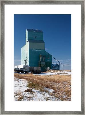 Arrowwood Alberta Framed Print by Jill Lassaline