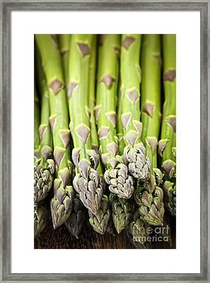 Asparagus Framed Print by Elena Elisseeva