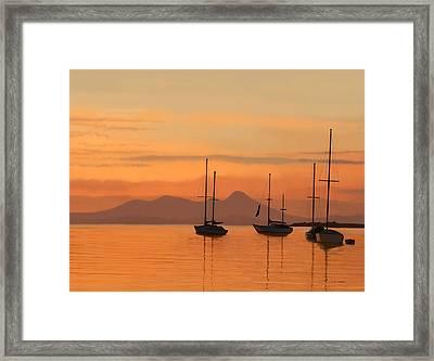 At Anchor Framed Print by Tim Stringer