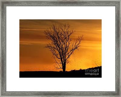 Framed Print featuring the digital art At End Of Day II by Rhonda Strickland