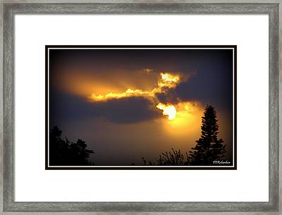Aubade Framed Print by Priscilla Richardson