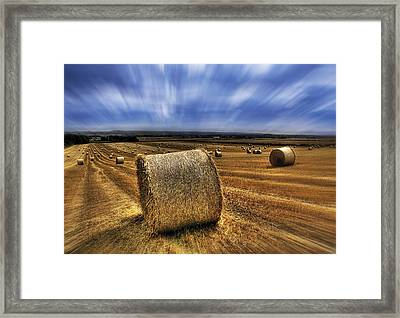 August Field Framed Print by Svetlana Sewell